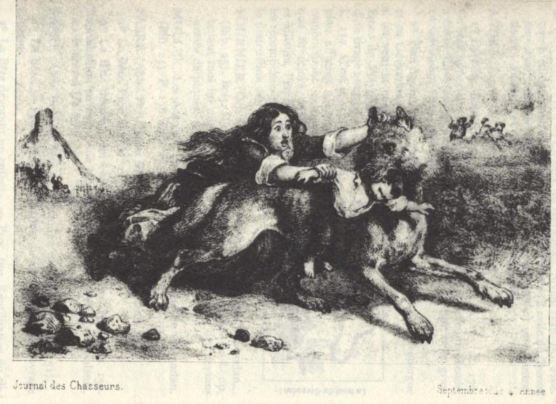 La bête du Gévaudan 810