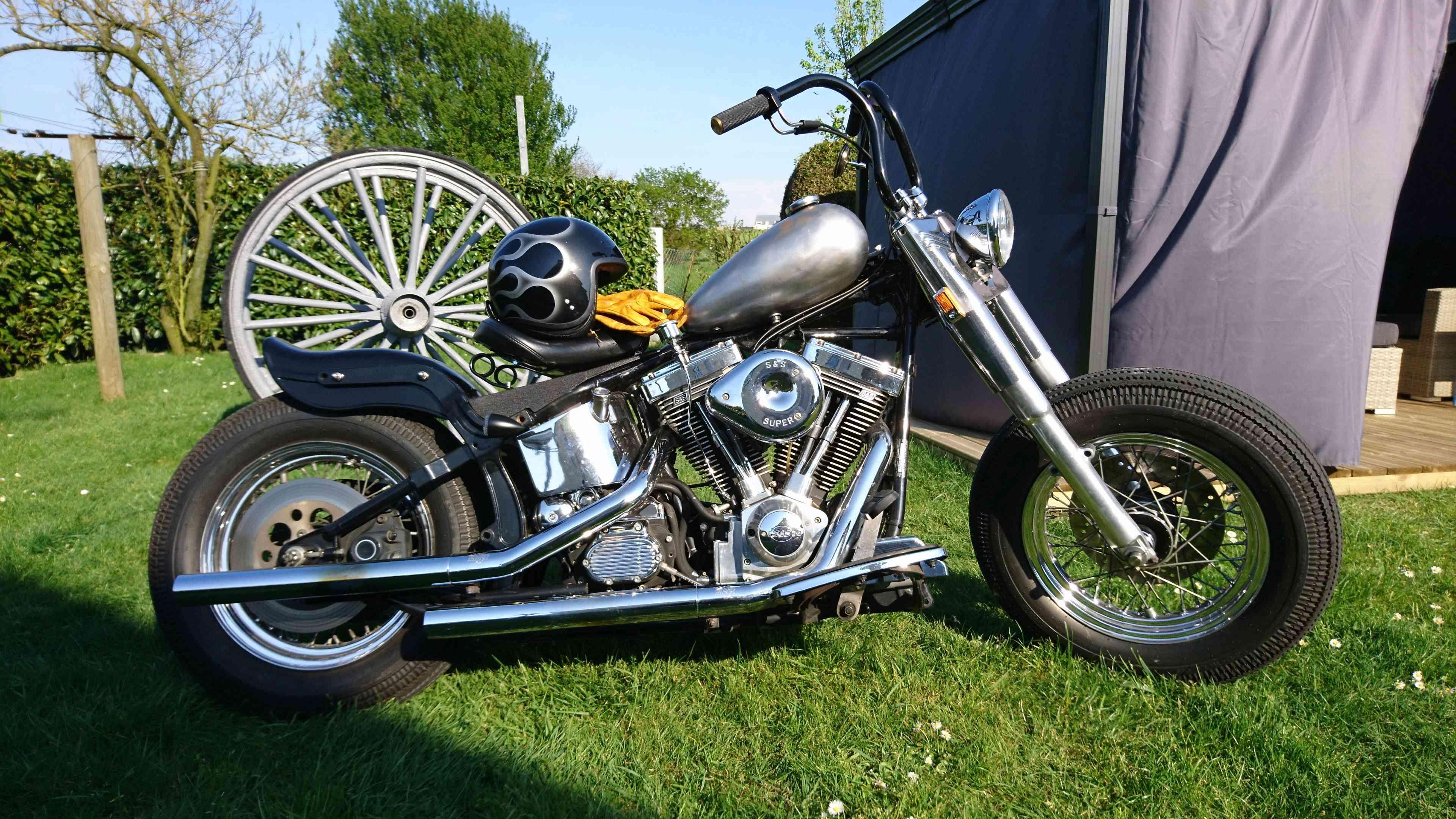 Combien de Softail sur le forum Passion-Harley - Page 13 Dsc_0225