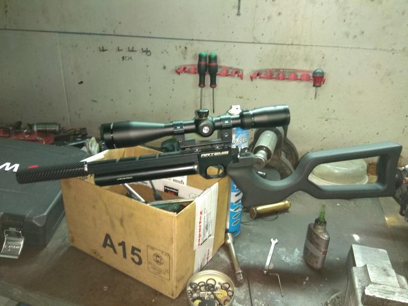 Hésitation pistolet Artémis Img_2016