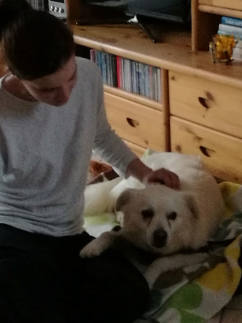 Malakaï  - mâle - refuge de Târgu Frumos - adopté Allemagne Img-2025