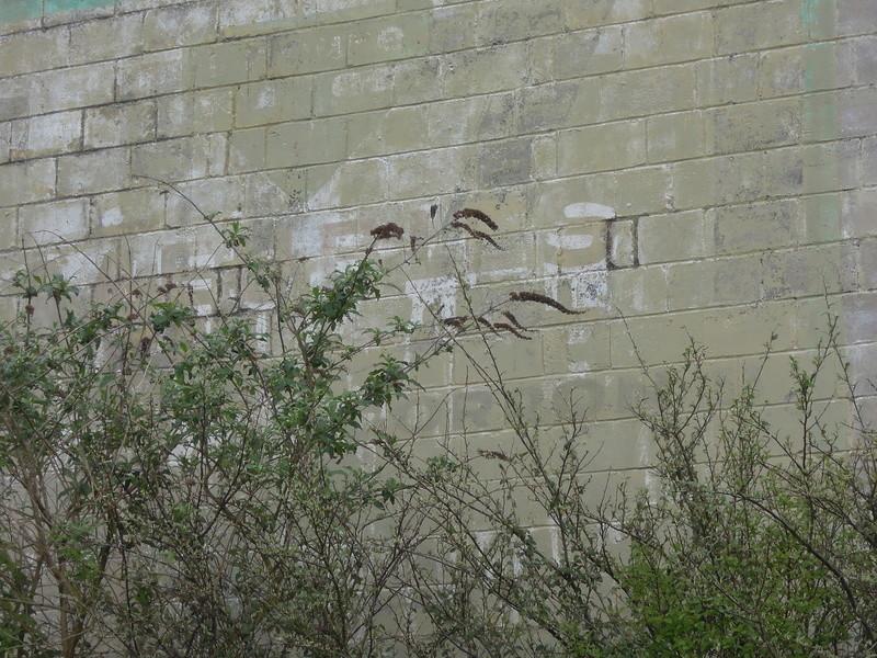 photos vieux murs publicitaires Iho_0416