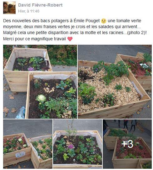 Incroyables Comestibles de Boulogne Billancourt  Clipb116