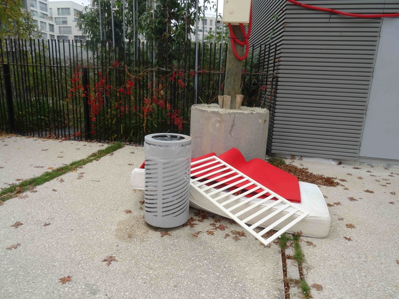 Encombrants, poubelles et caddies Dsc04557