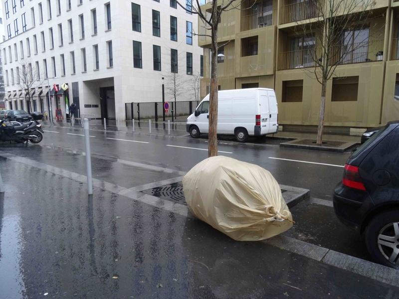 Collecte de sapins par Grand Paris Seine Ouest (GPSO) Dsc05433