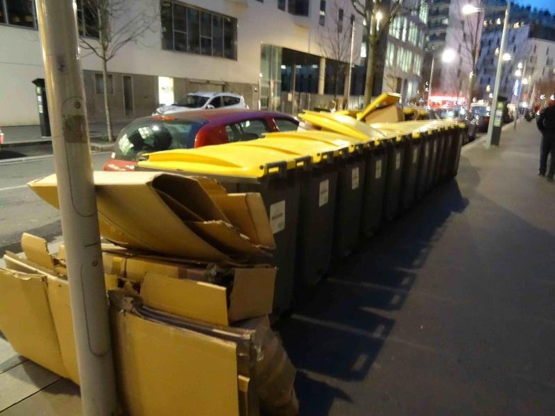 Sorties des poubelles ... Dsc05611