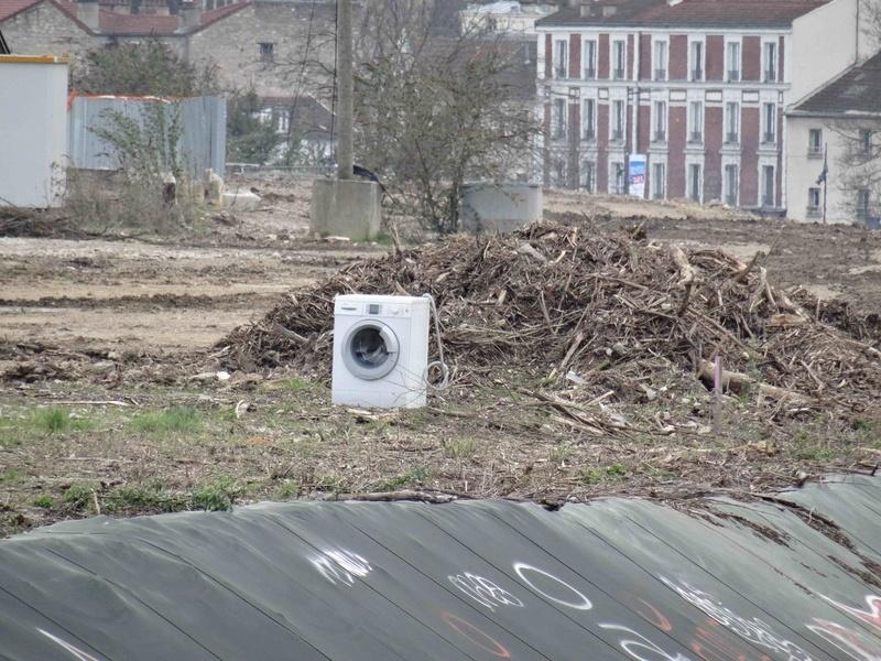 Encombrants, poubelles et caddies Dsc06022
