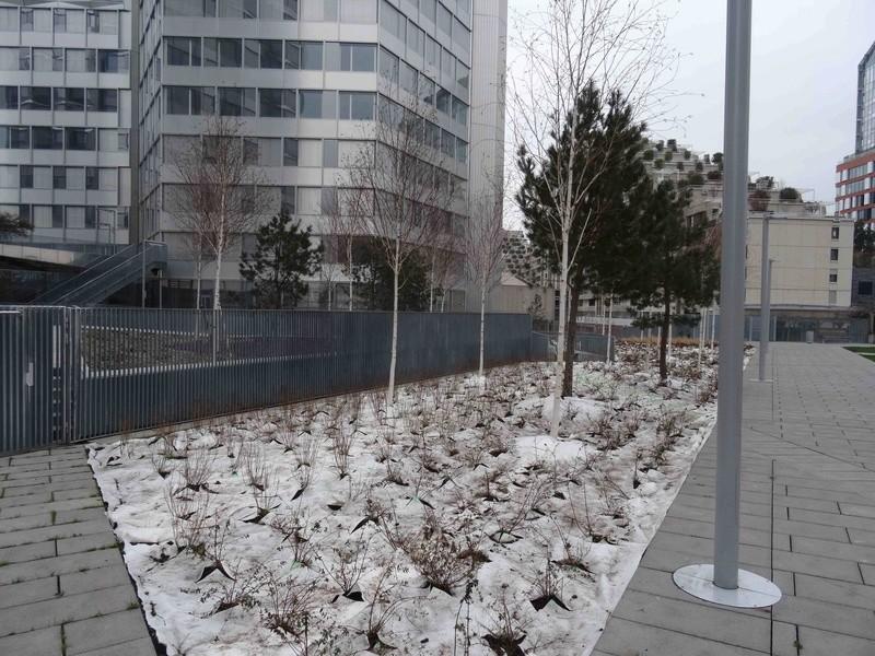 Jardin des Tours Dsc06331