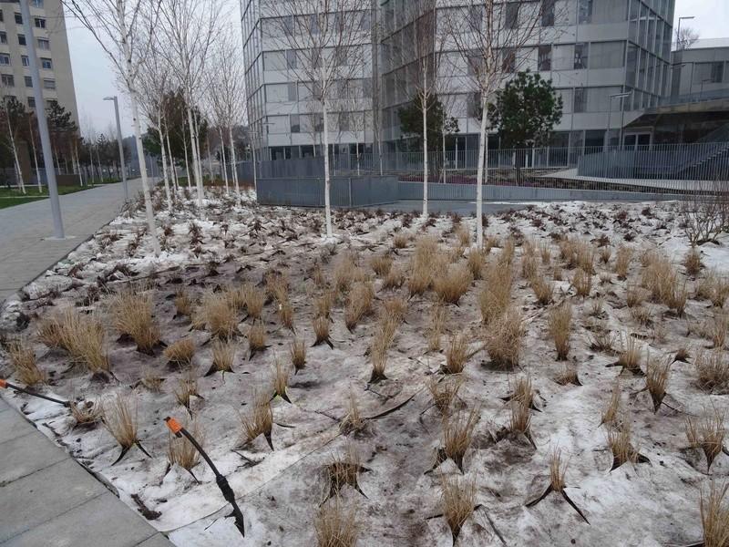 Jardin des Tours Dsc06332