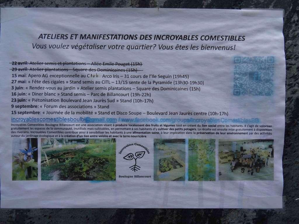 Incroyables Comestibles de Boulogne Billancourt  Dsc07546