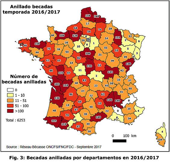 Informe 26 ONCFS-FRANCE de Octubre 2017 Anilla10