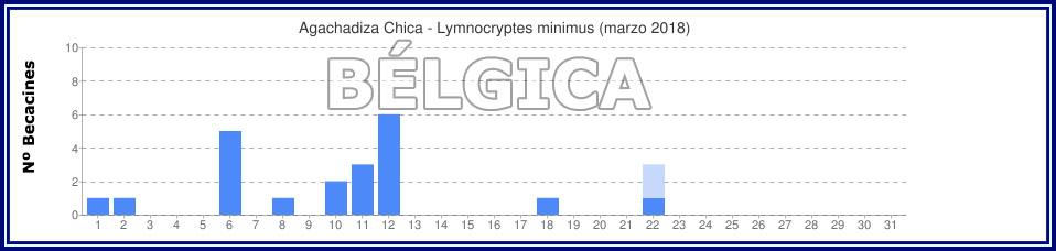 Avistamientos Agachadiza Chica en Bélgica - Enero, Febrero y Marzo Gyyfic30