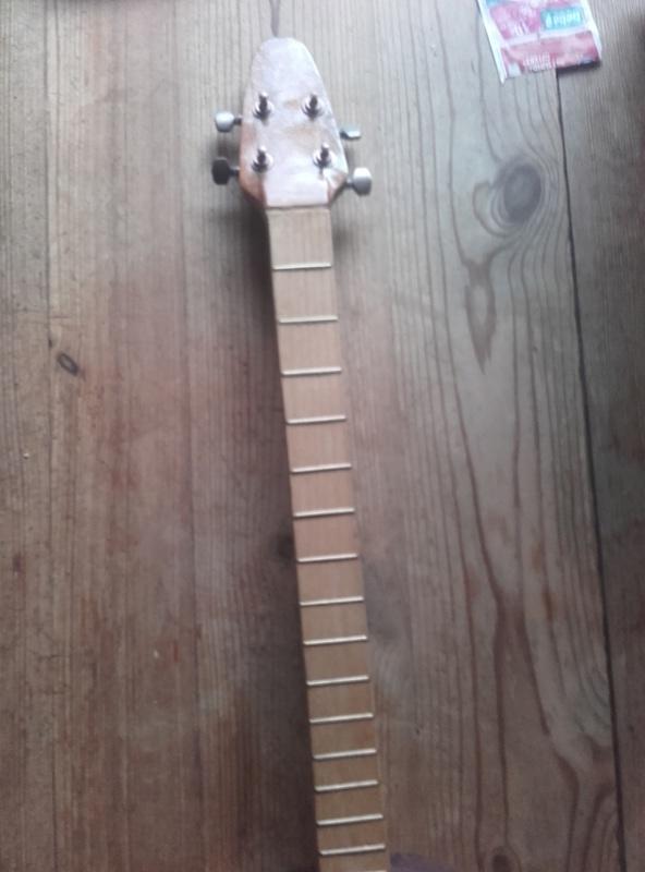 banjo bois 4 cordes  20180112
