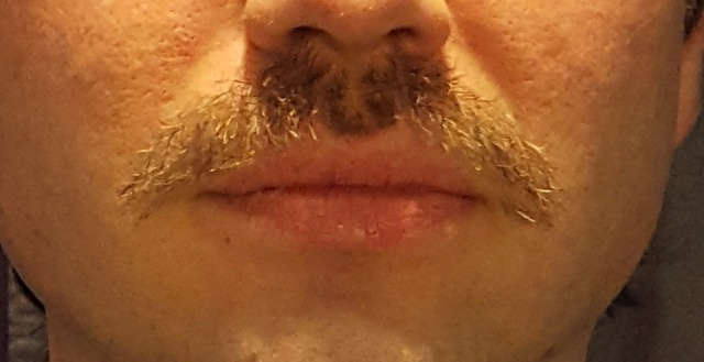 Movember 2017 - Page 2 20171123