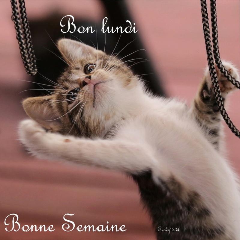 BON LUNDI BONNE SEMAINE Bon_lu10