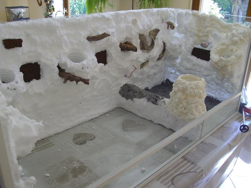 Nouveau terrarium et décor fait maison pour ma Rhino  Imgp0618