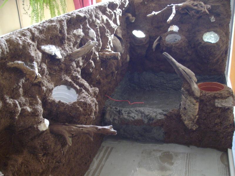 Nouveau terrarium et décor fait maison pour ma Rhino  Imgp0710