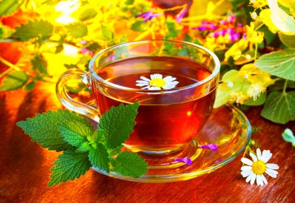 Изготовление настоев и чая для усиления интуиции. Khotit10