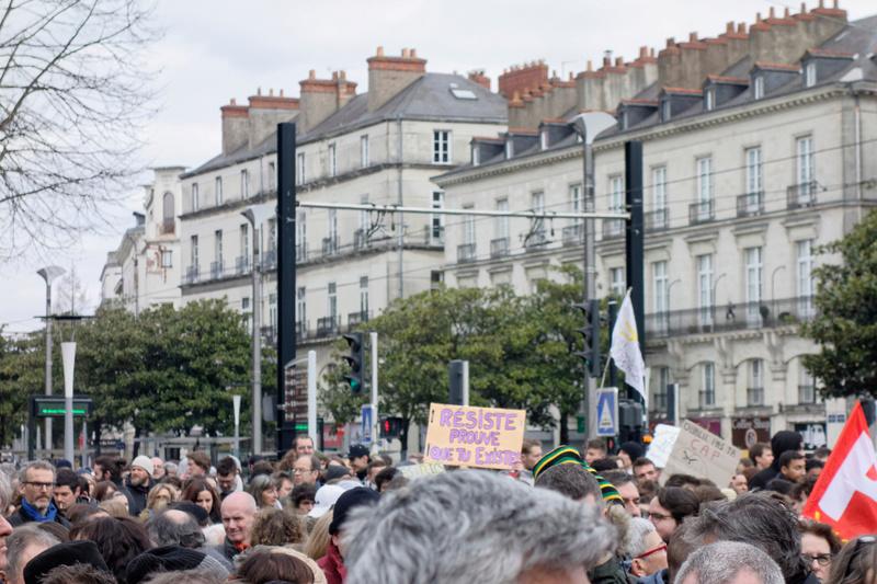 Manif à Nantes C_dsc310