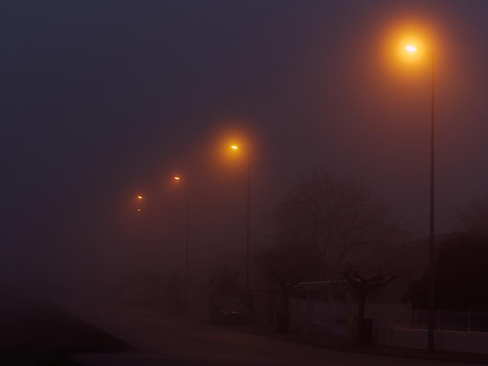 Brouillard à Perpignan P1110110