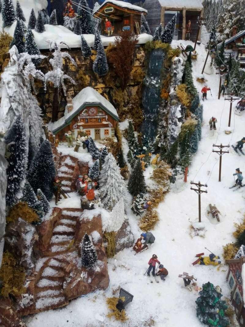 Tombe la neige (Fabipat 2017) 20171227