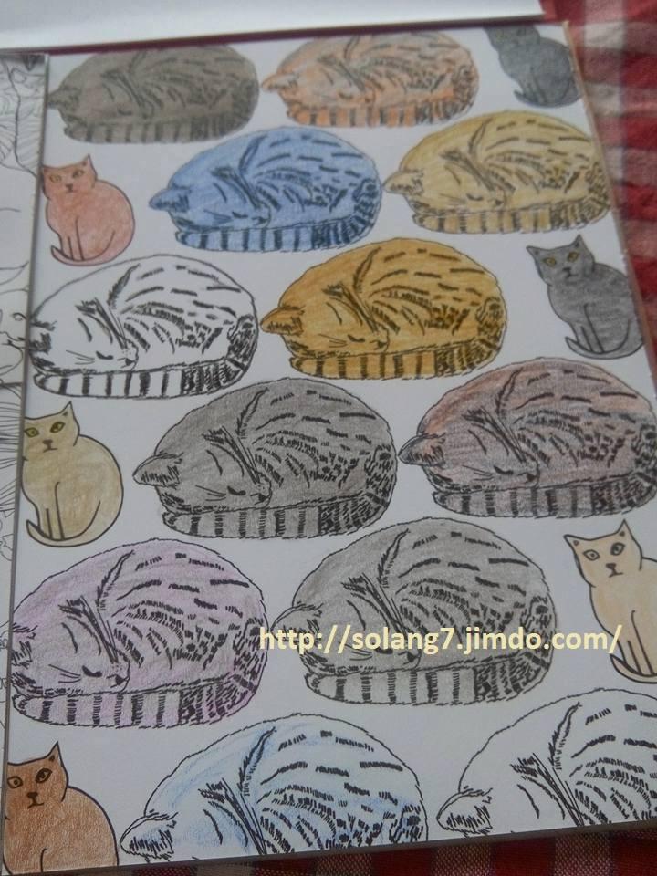 Creations de Solange : admin 13327510