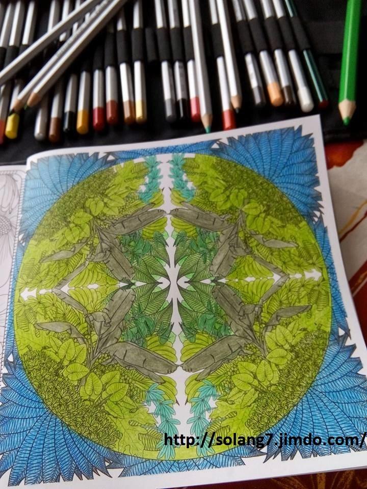 Creations de Solange : admin 13466310