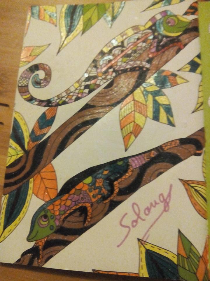 Creations de Solange : admin 14432910
