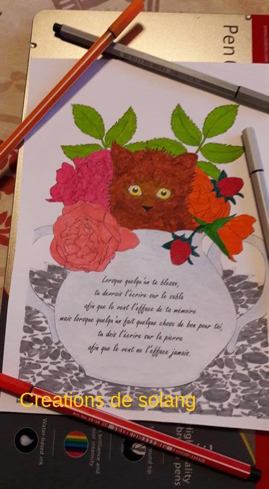 Creations de Solange : admin 15941010