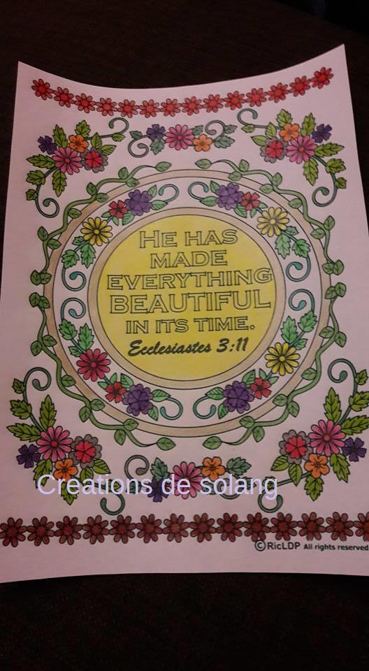 Creations de Solange : admin 16002910