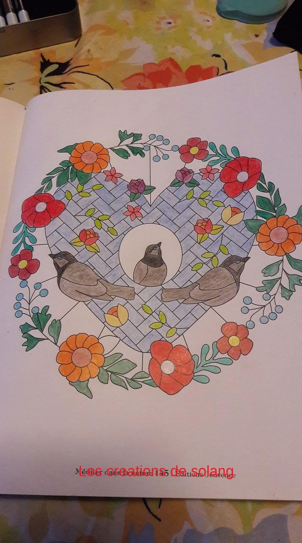 Creations de Solange : admin 16463510