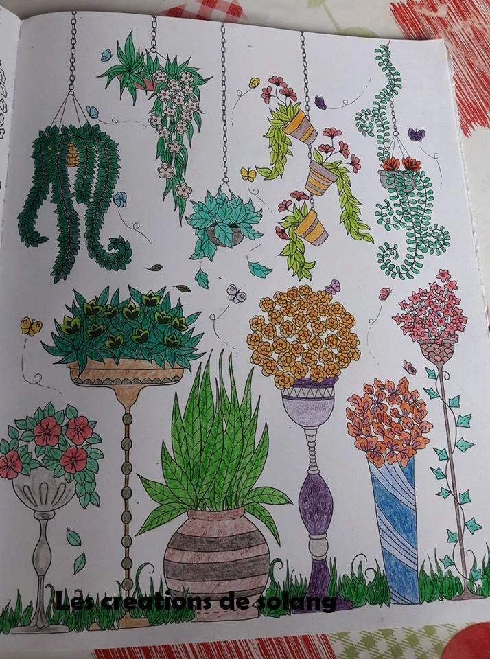 Creations de Solange : admin 22154210