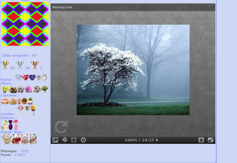 Puzzle #0311 / Morning mist Mimo228