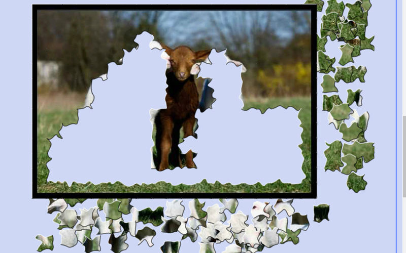Puzzle #115 / Les 3 bouc-squetaires Mimo59