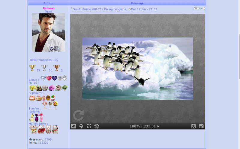 Puzzle #0162 / Diving penguins Photo_11