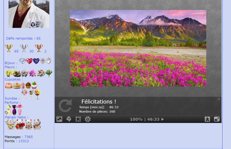 Puzzle #046 / Pink flowers and beautiful mountains Puzzl101