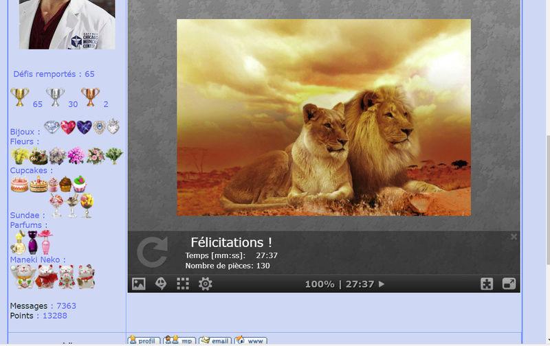 Puzzle #0142 / Lions Puzzl109