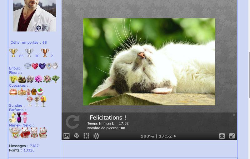 Puzzle #05 / Sleeping Cat Puzzl126