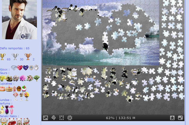 Puzzle #0162 / Diving penguins Puzzl133