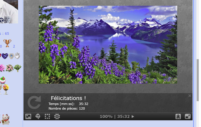 Puzzle #0179 / Lupins flowers and blue mountains Puzzl150