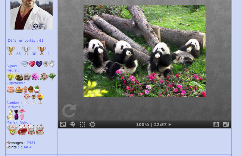 Puzzle #0200 / Baby pandas Puzzl177
