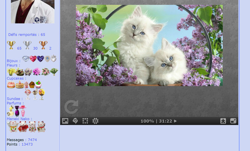 Puzzle #0215 / Adoooorable kittens Puzzl192