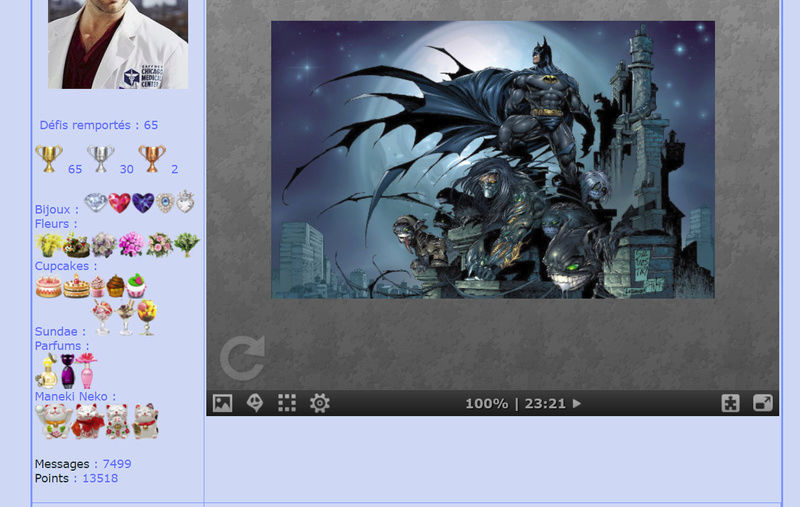 Puzzle #0223 /  Batman Puzzl198