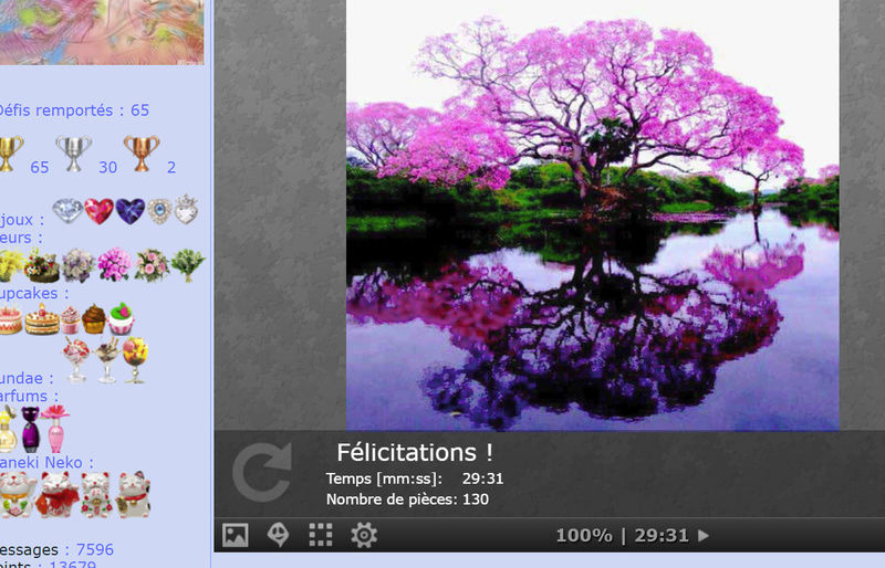 Puzzle #0264 /  Beautiful pink tree Puzzl244