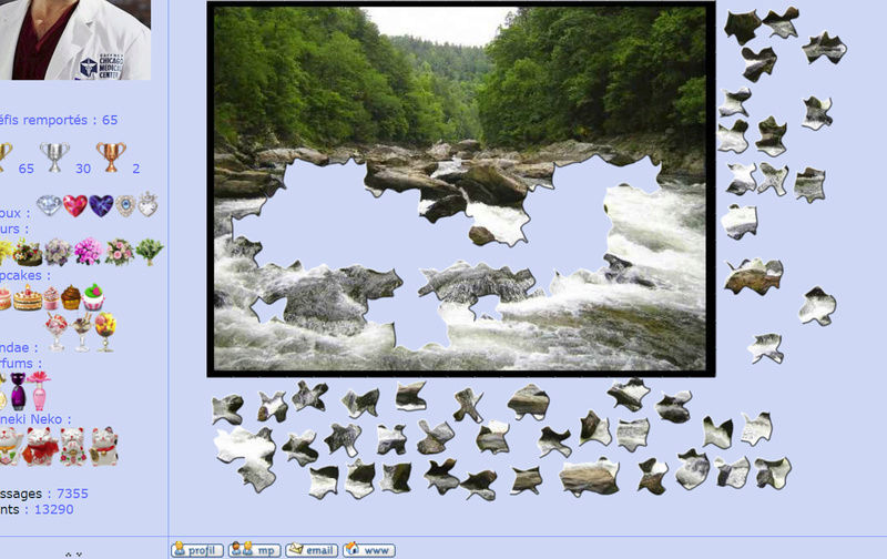 Puzzle #128 / Chatooga River Puzzle29