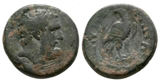 Bronce Antonino Pio. Emesa 26907710