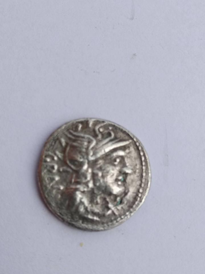 Opinión denario gens Antestia, Curtia y Vibia 33615810