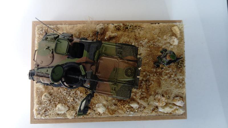 VBL en Afghanistan , 1/35 Tiger Model  Vbl_1011