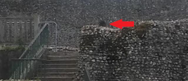 Le fantôme d'un moine photographié dans un château - Page 3 Cas410