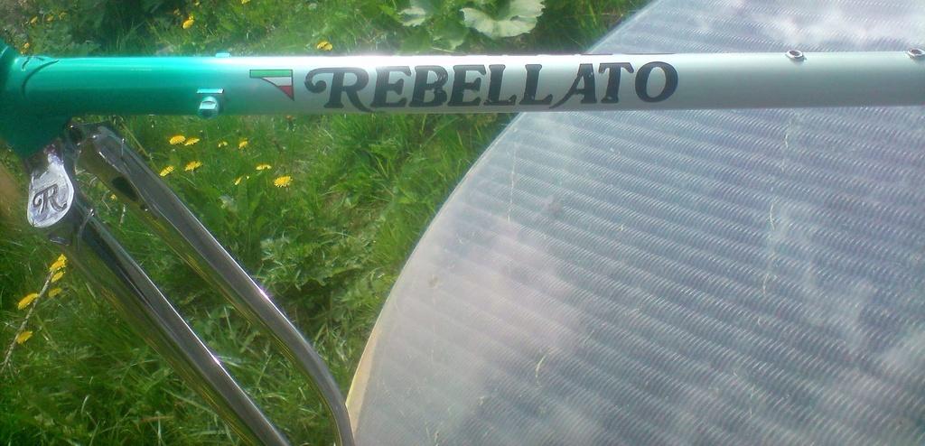 Rebellato  P2304116