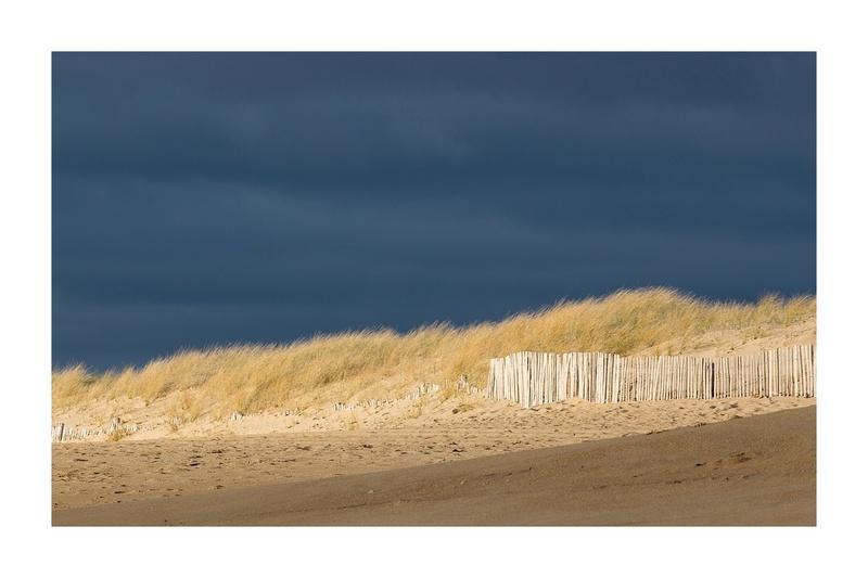 Dunes sous lumière _mg_0011